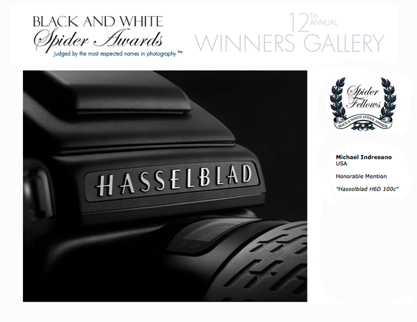 hasselblad, spider awards, black and white spider award, Michael Indresano photography, commercial photography, boston commercial photography